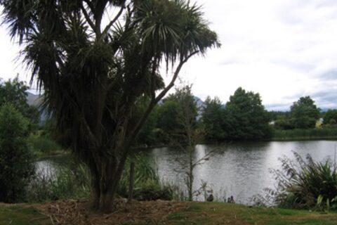 Lake Killarney Reserve