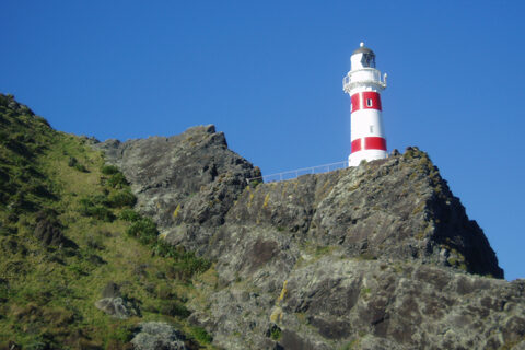 Cape Palliser Lighthouse