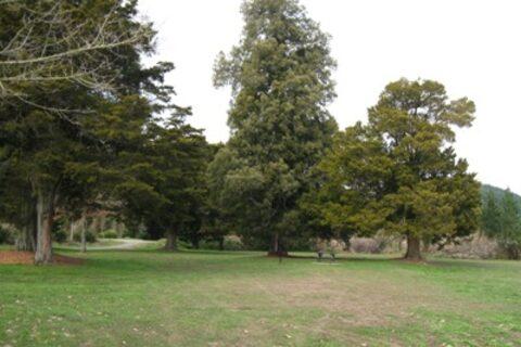 Wai-iti Recreation Reserve