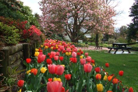 Washbourn Gardens