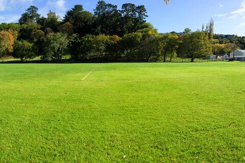 Peat Park
