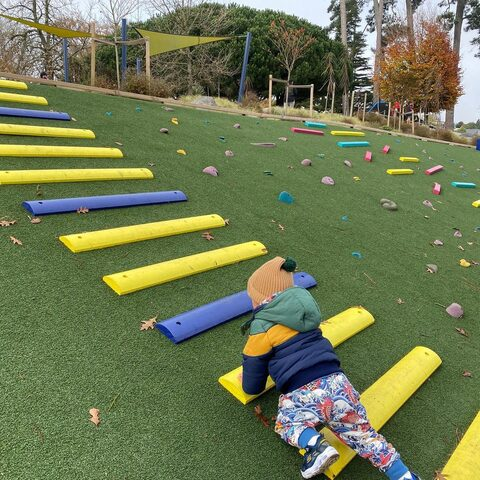 Hamilton Lake Playground