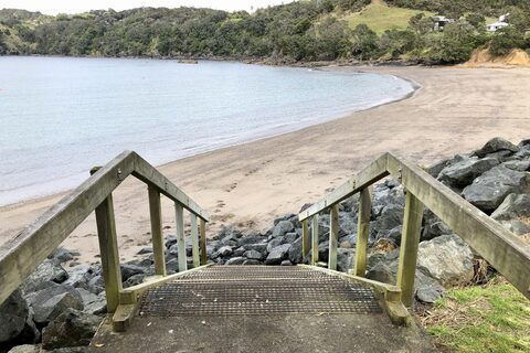 Mathesons Bay Reserve