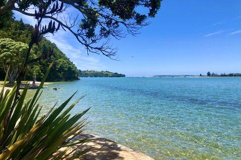 Whangateau Beach