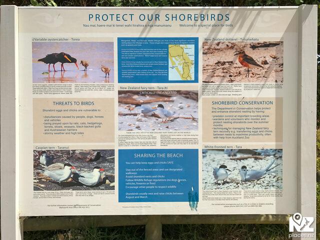 Pakiri Beach Toilets & Info