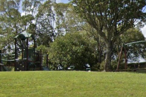 Aronia Park Playground