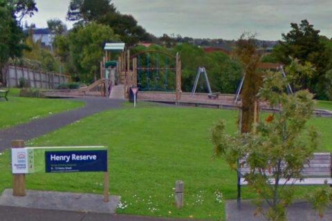 Henry Reserve Playground