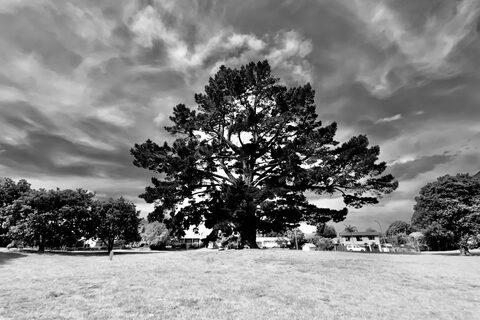 Beaumont Green Playground