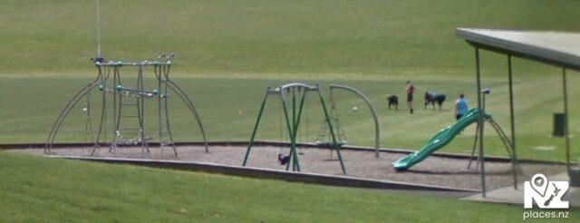 Bert Henham Park Playground