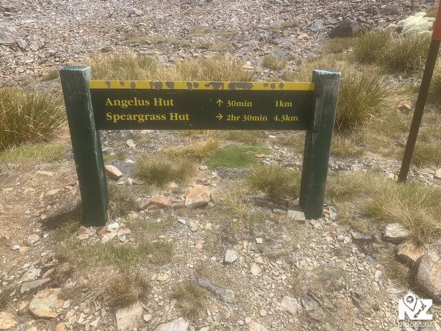 Speargrass Creek Track